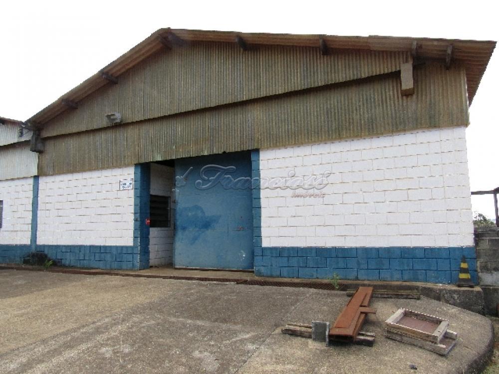 Comprar Comercial / Barracão em Itapetininga - Foto 12