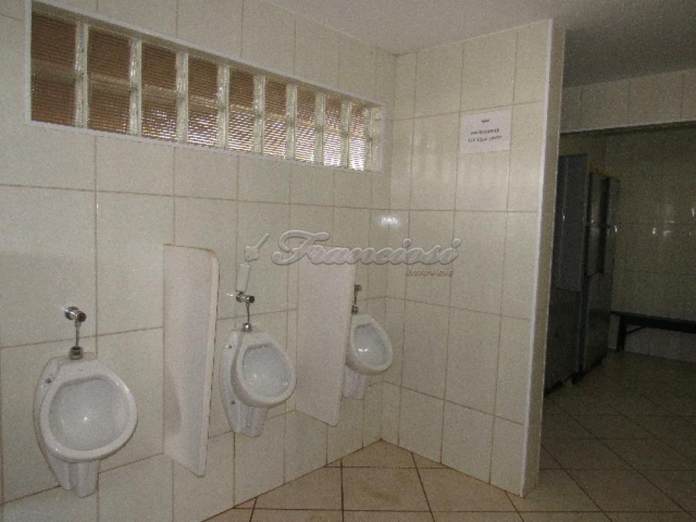 Comprar Comercial / Barracão em Itapetininga - Foto 21