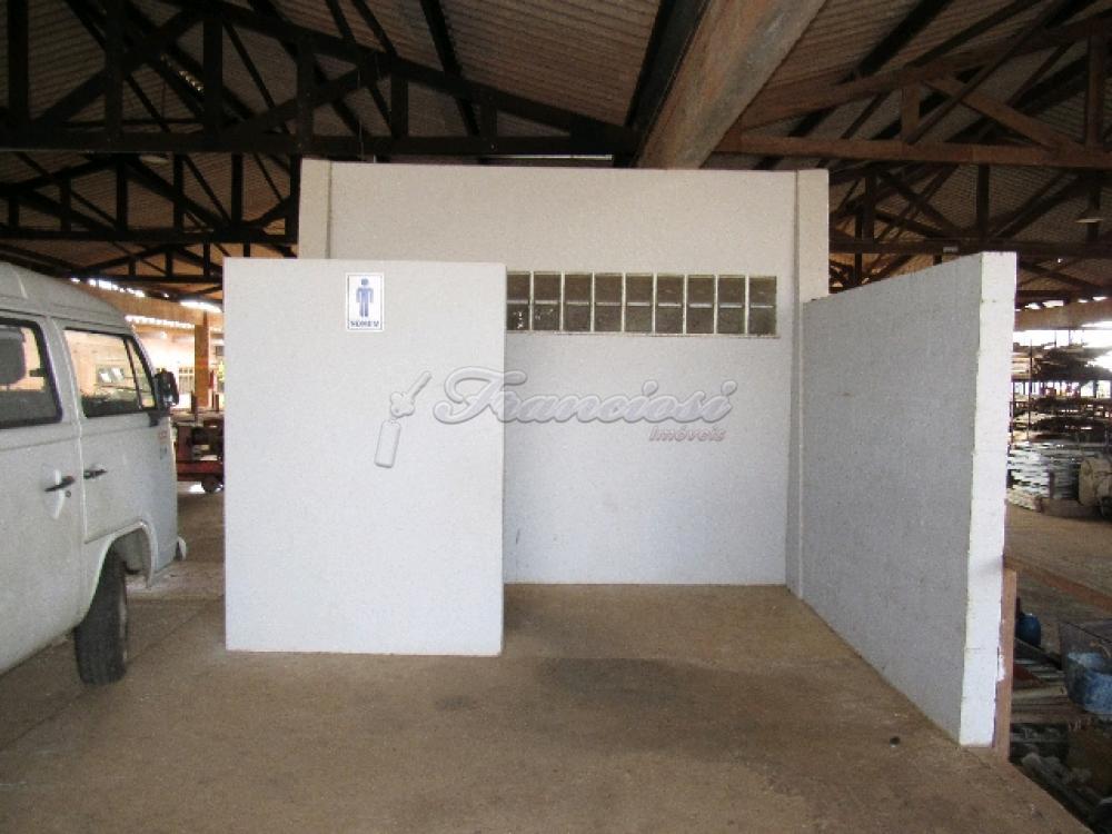 Comprar Comercial / Barracão em Itapetininga - Foto 24