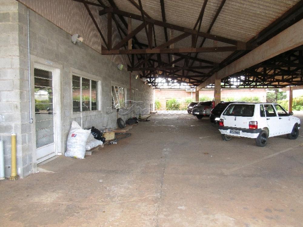Comprar Comercial / Barracão em Itapetininga - Foto 32