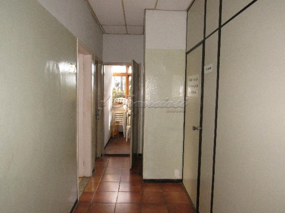 Comprar Comercial / Barracão em Itapetininga - Foto 50