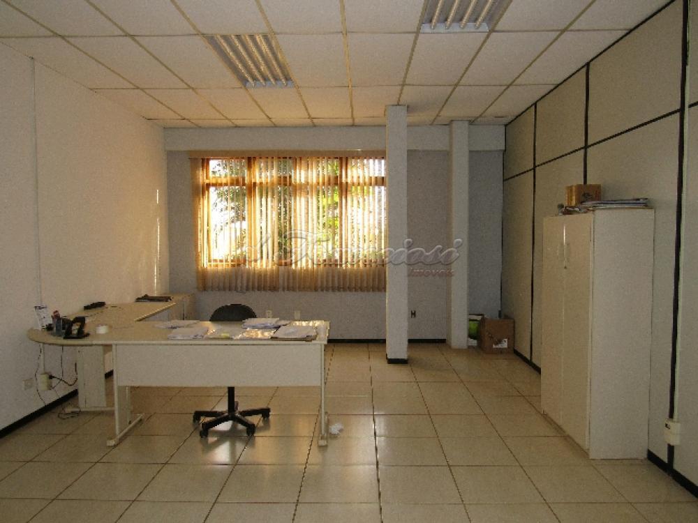 Comprar Comercial / Barracão em Itapetininga - Foto 54