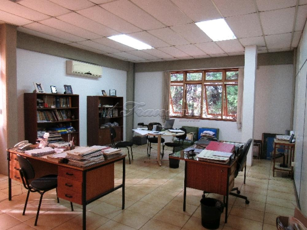 Comprar Comercial / Barracão em Itapetininga - Foto 72