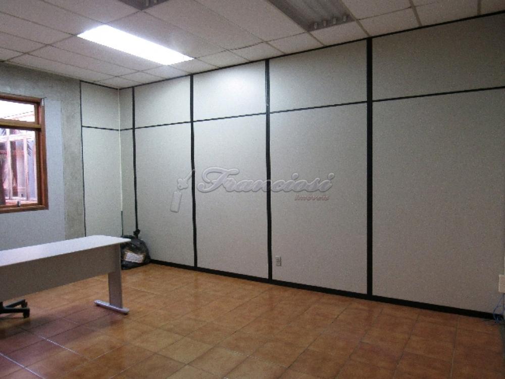 Comprar Comercial / Barracão em Itapetininga - Foto 74