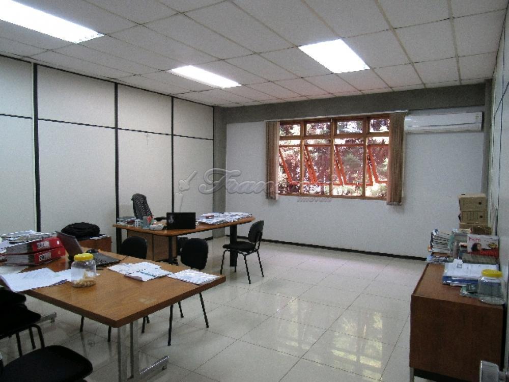 Comprar Comercial / Barracão em Itapetininga - Foto 75