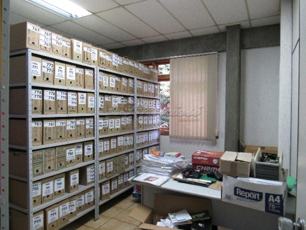 Comprar Comercial / Barracão em Itapetininga - Foto 76