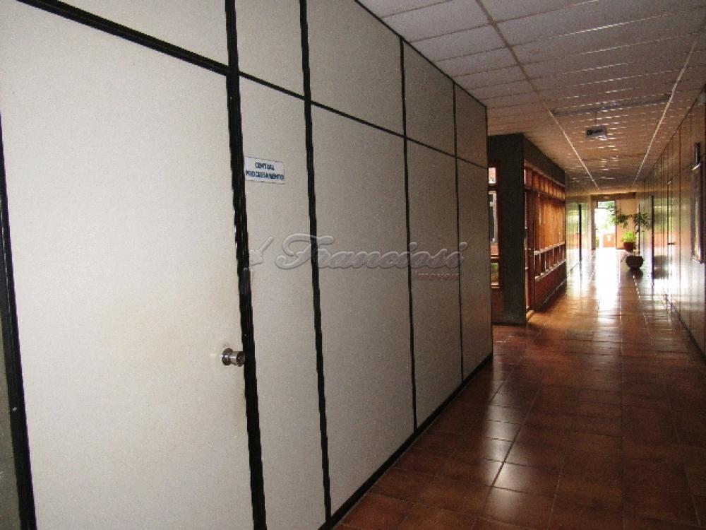 Comprar Comercial / Barracão em Itapetininga - Foto 82