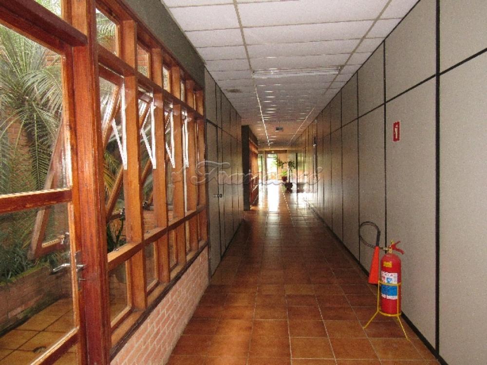 Comprar Comercial / Barracão em Itapetininga - Foto 83
