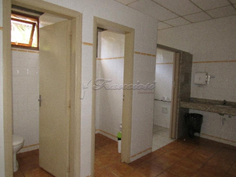 Comprar Comercial / Barracão em Itapetininga - Foto 85