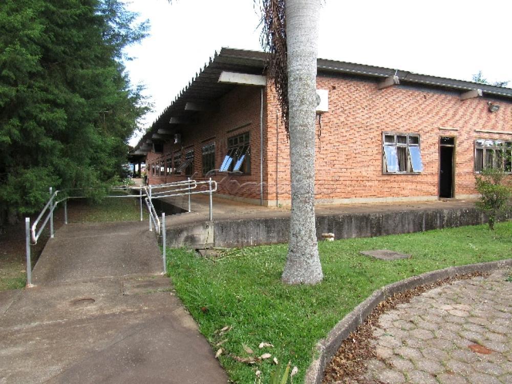 Comprar Comercial / Barracão em Itapetininga - Foto 92