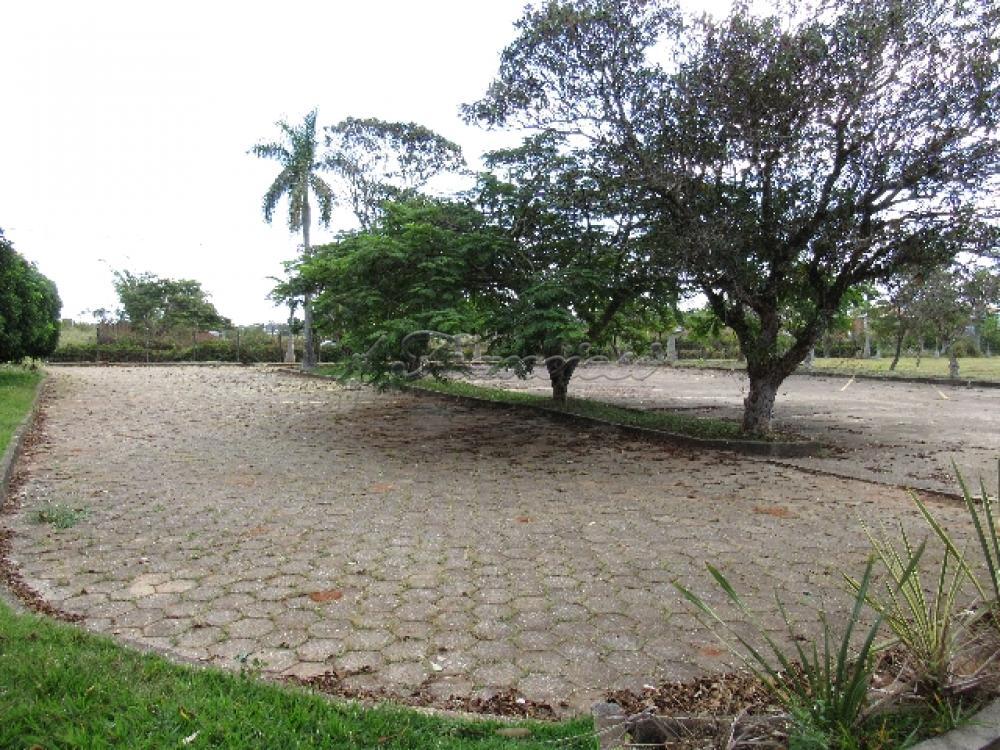 Comprar Comercial / Barracão em Itapetininga - Foto 93