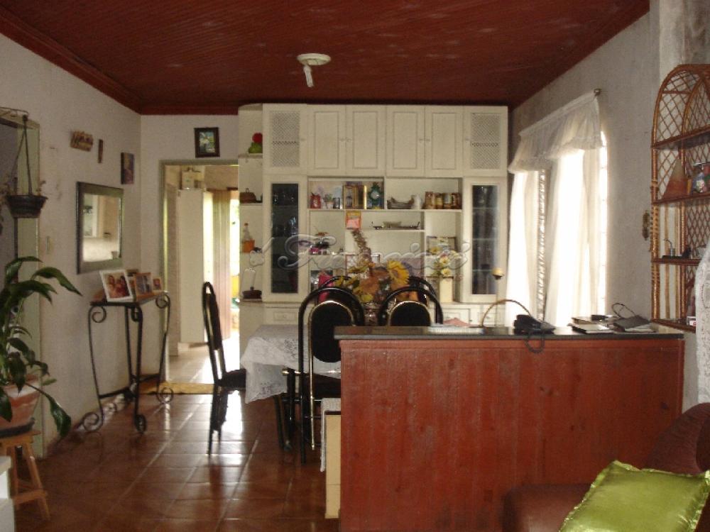 Comprar Casa / Casa Padrão em Itapetininga. apenas R$ 400.000,00