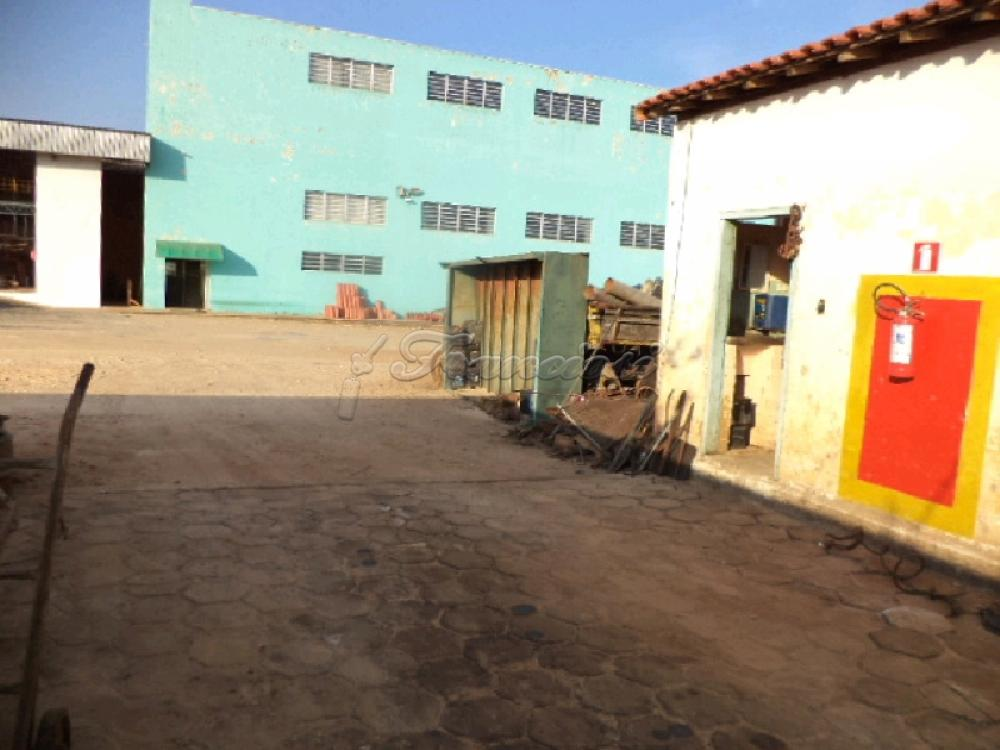 Comprar Comercial / Barracão em Itapetininga apenas R$ 6.500.000,00 - Foto 16