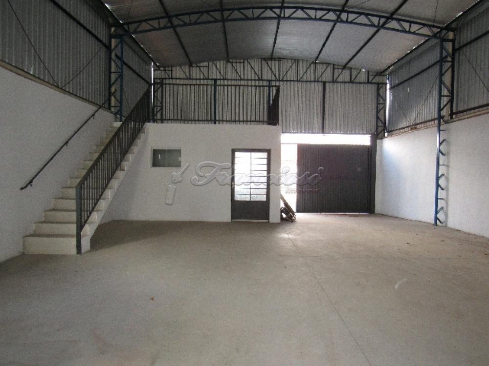 Alugar Comercial / Barracão em Itapetininga apenas R$ 3.500,00 - Foto 5