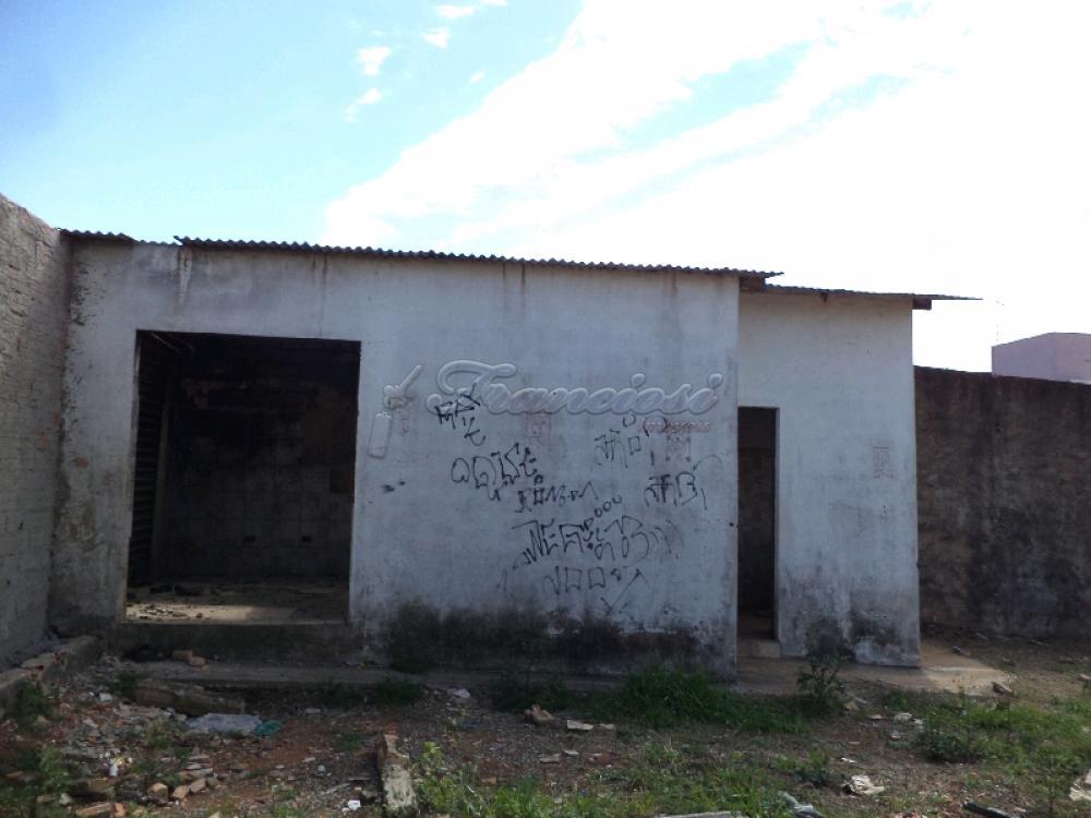 Alugar Comercial / Terreno em Itapetininga apenas R$ 1.500,00 - Foto 3
