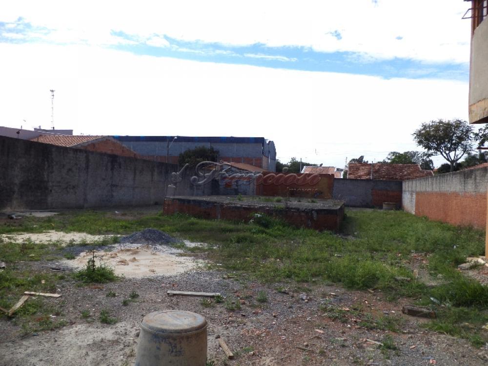 Alugar Comercial / Terreno em Itapetininga apenas R$ 1.500,00 - Foto 4