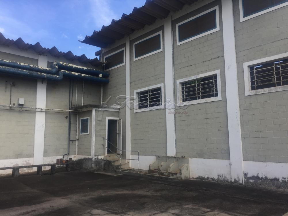 Alugar Comercial / Barracão em Itapetininga apenas R$ 12.000,00 - Foto 31