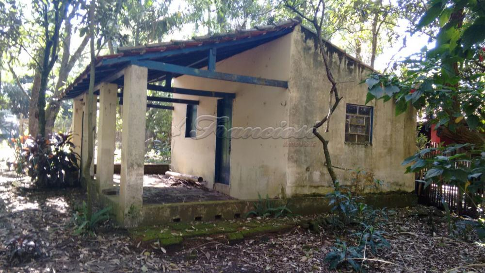 Alugar Rural / Rancho em Itapetininga apenas R$ 800,00 - Foto 2