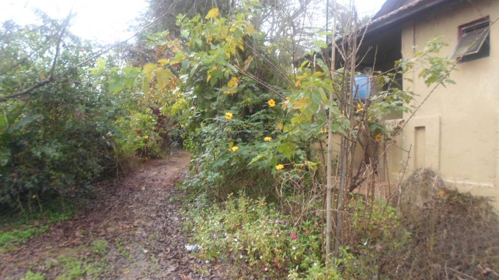 Alugar Rural / Rancho em Itapetininga apenas R$ 800,00 - Foto 10