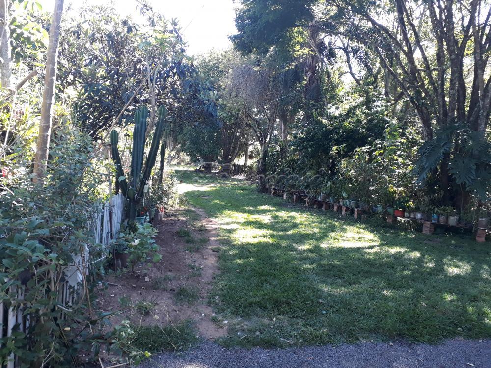 Alugar Rural / Rancho em Itapetininga apenas R$ 800,00 - Foto 23