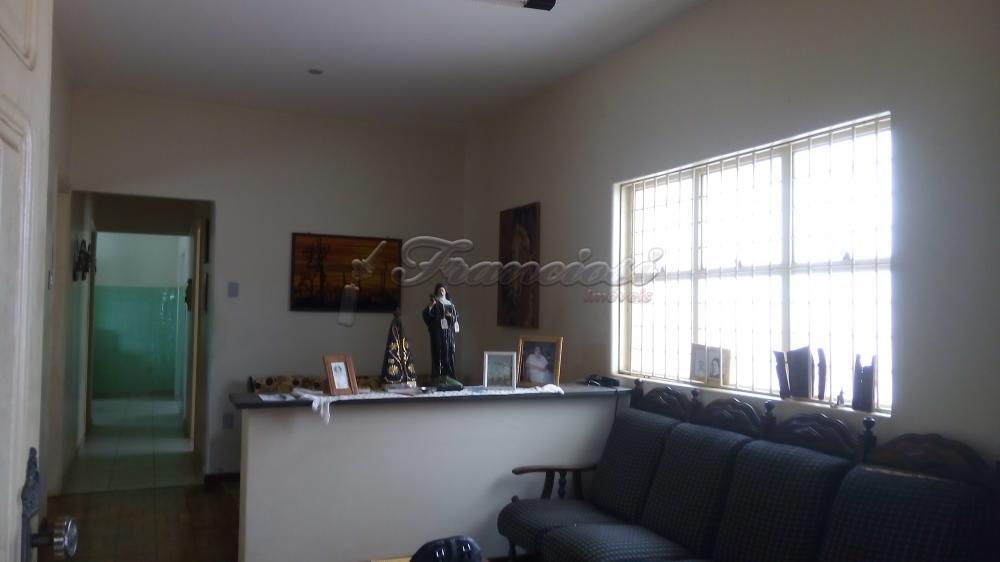 Comprar Casa / Comercial em Itapetininga apenas R$ 1.300.000,00 - Foto 2
