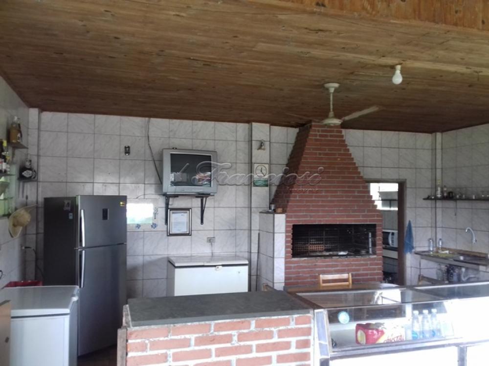 Comprar Rural / Chacara em Guareí apenas R$ 400.000,00 - Foto 11