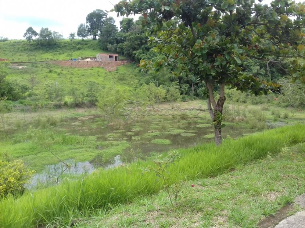 Comprar Rural / Chacara em Guareí apenas R$ 400.000,00 - Foto 12