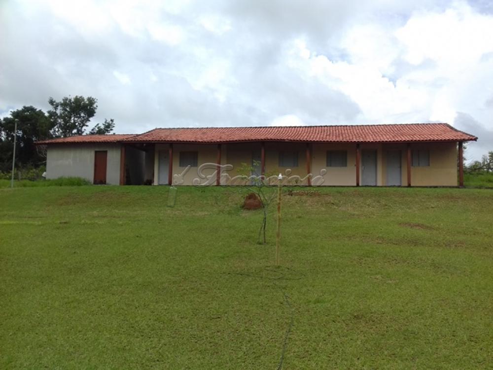 Comprar Rural / Chacara em Guareí apenas R$ 400.000,00 - Foto 16