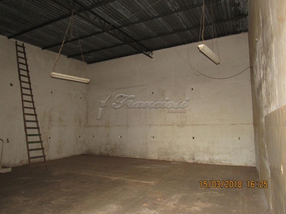 Comprar Comercial / Barracão em Itapetininga apenas R$ 320.000,00 - Foto 1