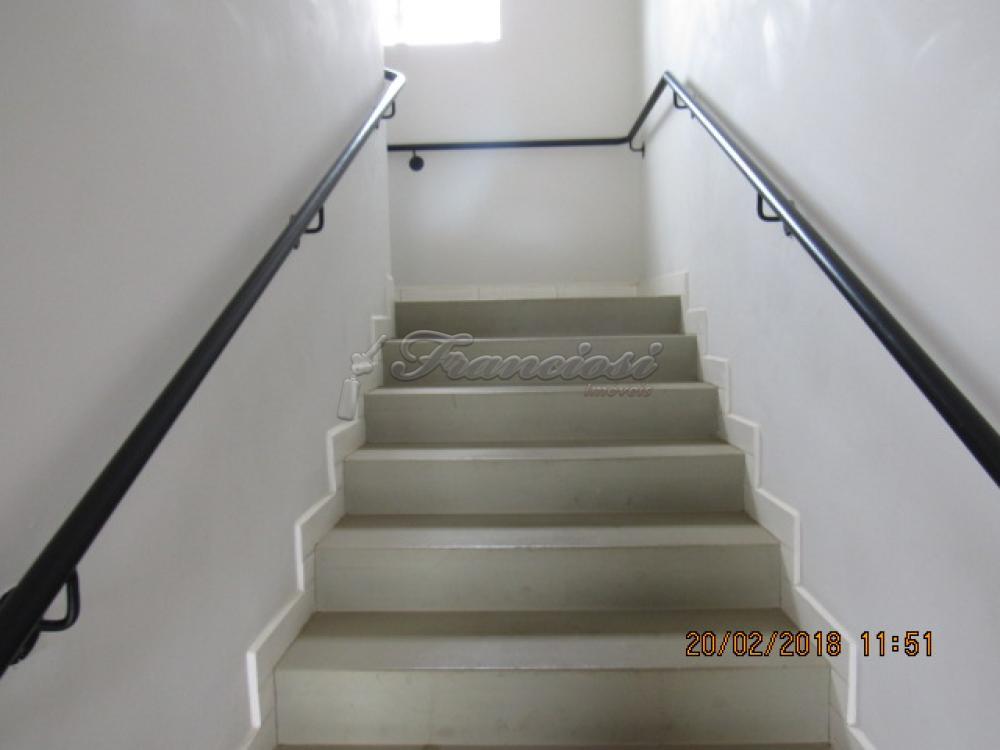 Alugar Apartamento / Padrão em Itapetininga apenas R$ 550,00 - Foto 3