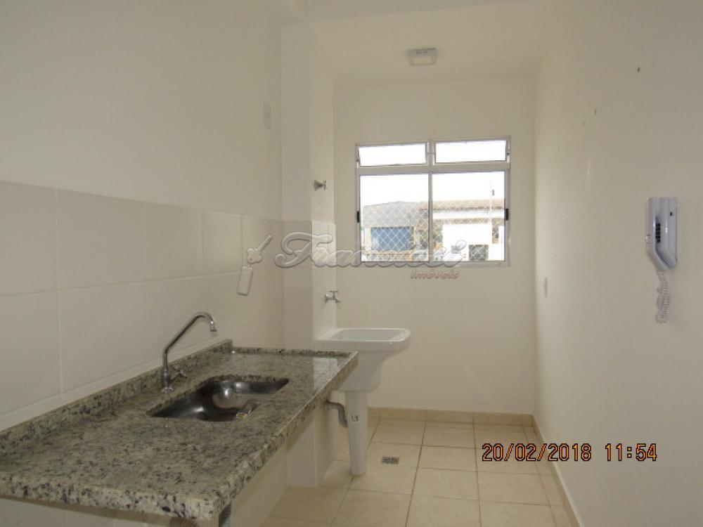 Alugar Apartamento / Padrão em Itapetininga apenas R$ 550,00 - Foto 7