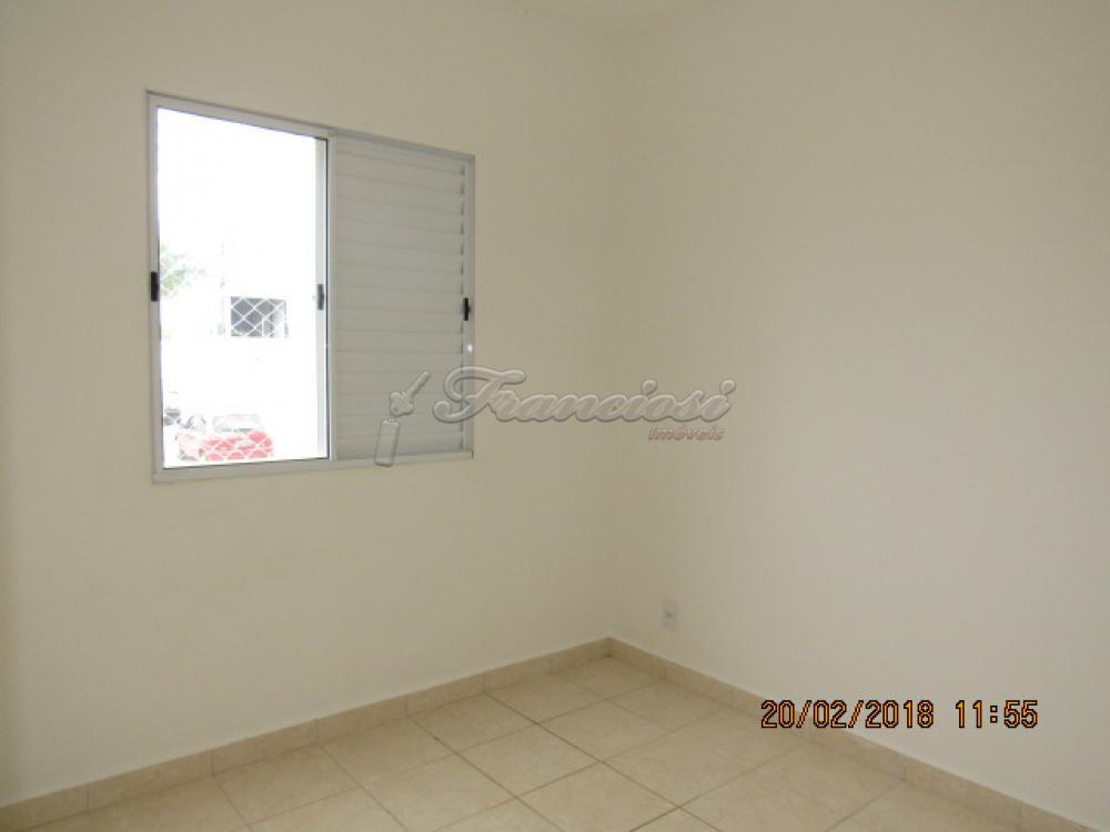 Alugar Apartamento / Padrão em Itapetininga apenas R$ 550,00 - Foto 13