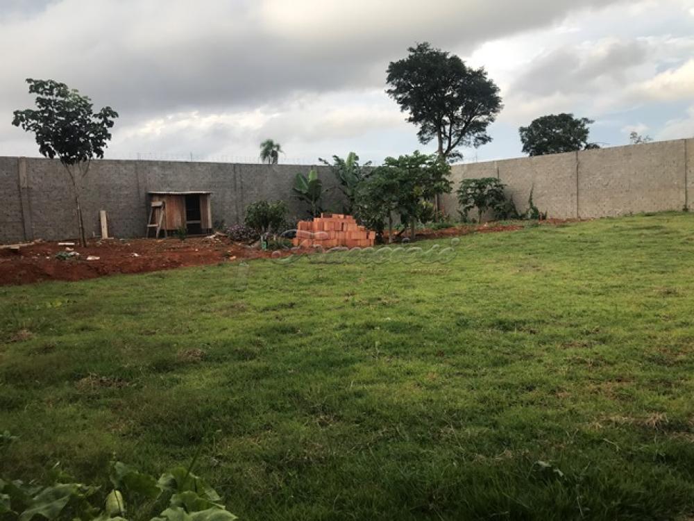 Comprar Casa / Padrão em Itapetininga apenas R$ 700.000,00 - Foto 14