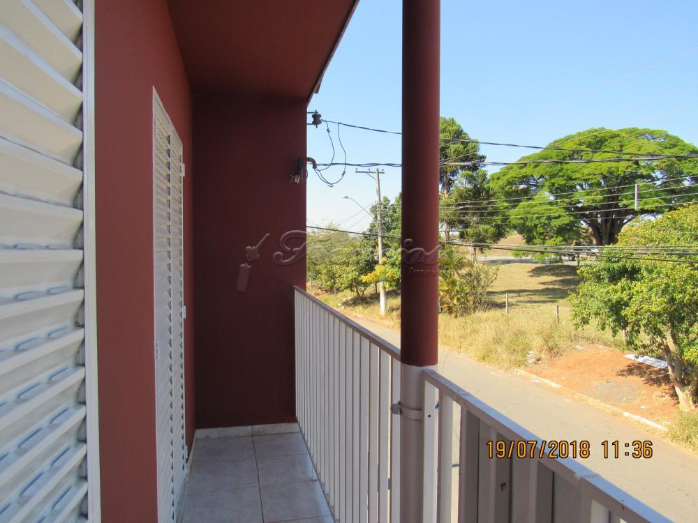 Alugar Casa / Padrão em Itapetininga apenas R$ 1.100,00 - Foto 8