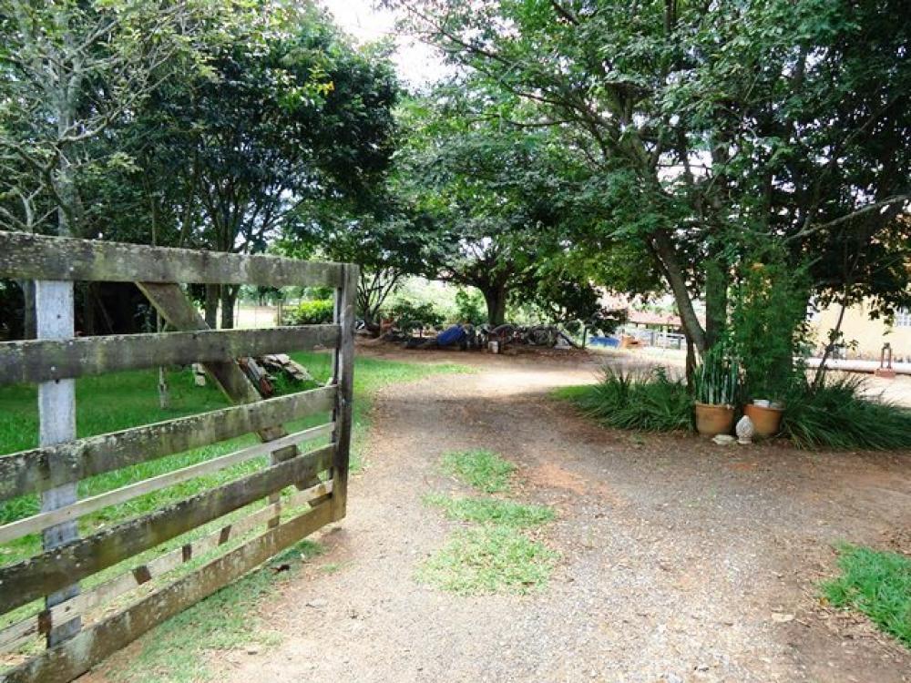 Comprar Rural / Sitio em Itapetininga apenas R$ 1.740.000,00 - Foto 1