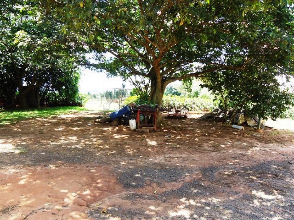 Comprar Rural / Sitio em Itapetininga apenas R$ 1.740.000,00 - Foto 5
