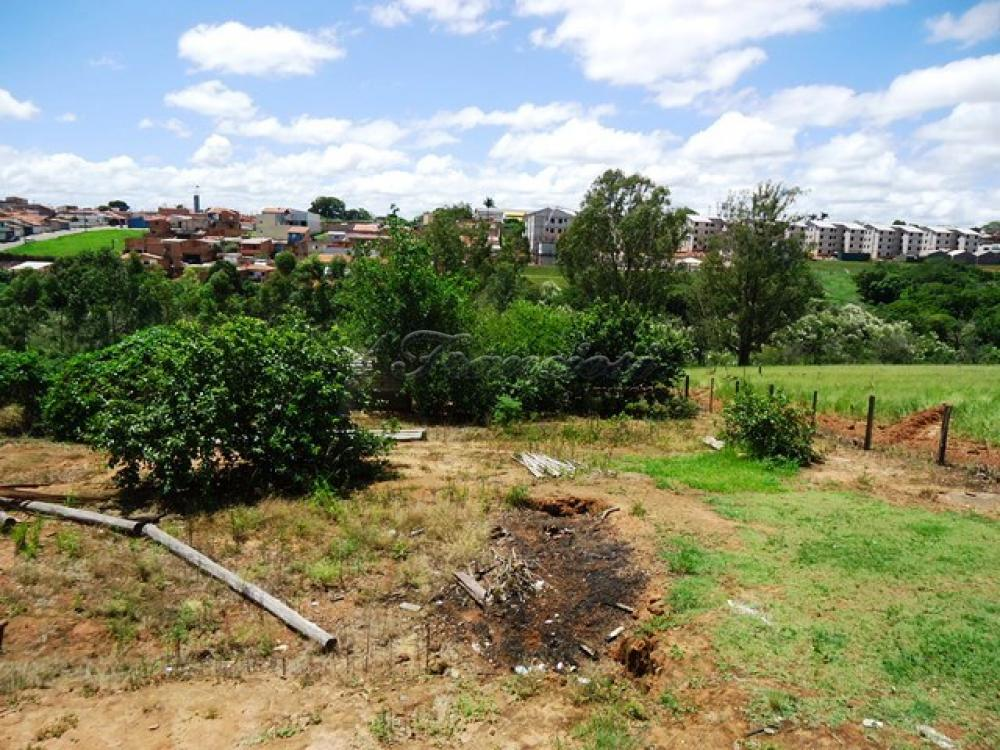 Comprar Rural / Sitio em Itapetininga apenas R$ 1.740.000,00 - Foto 7