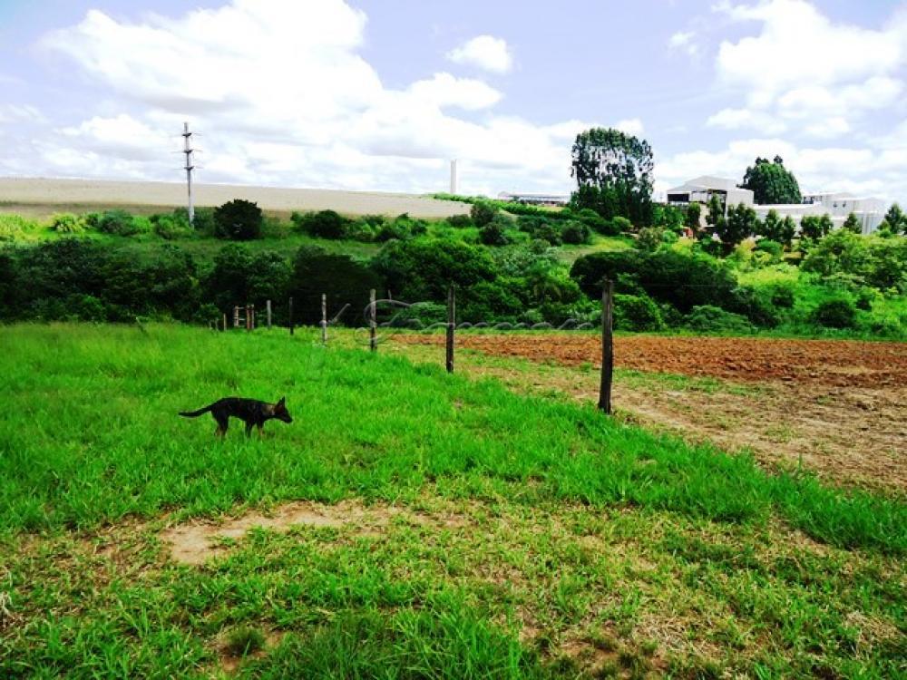 Comprar Rural / Sitio em Itapetininga apenas R$ 1.740.000,00 - Foto 13