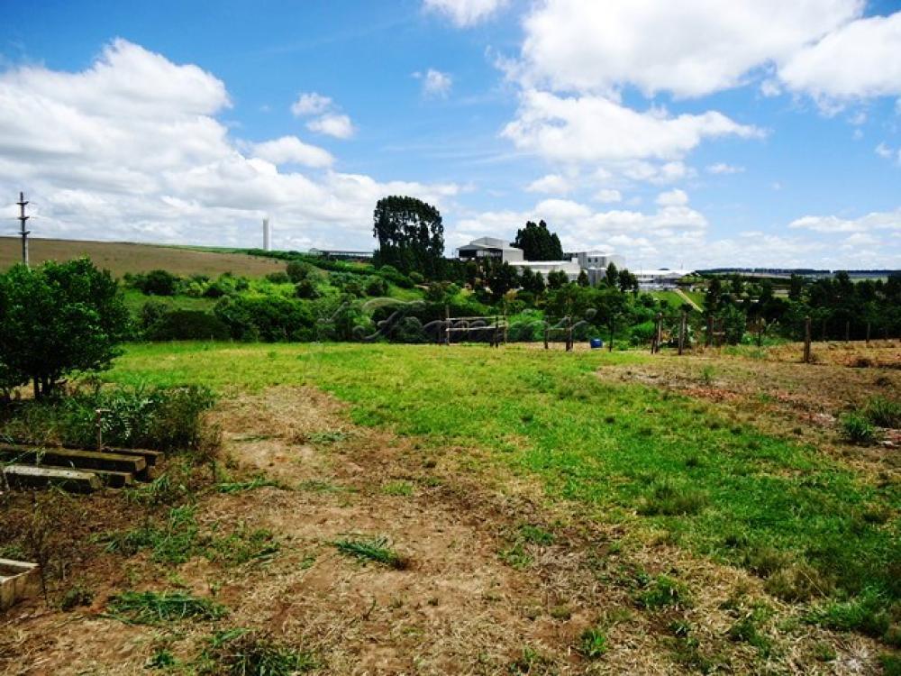 Comprar Rural / Sitio em Itapetininga apenas R$ 1.740.000,00 - Foto 14