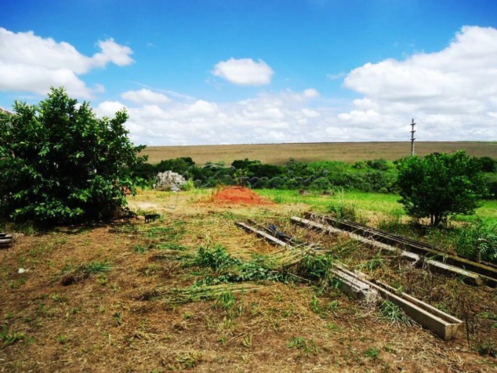 Comprar Rural / Sitio em Itapetininga apenas R$ 1.740.000,00 - Foto 15