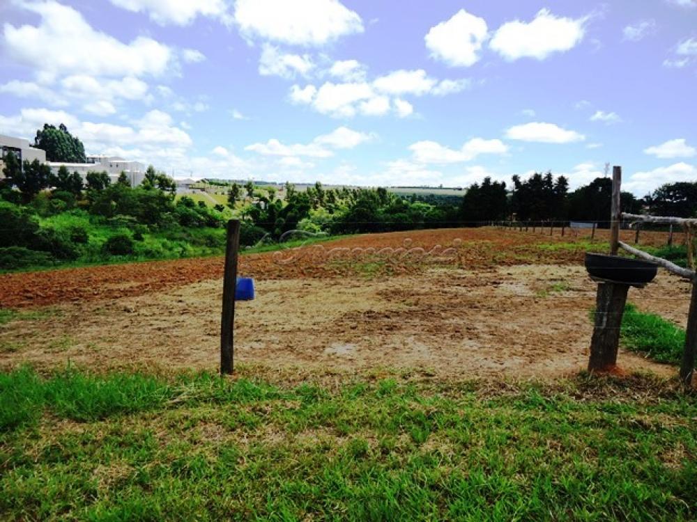 Comprar Rural / Sitio em Itapetininga apenas R$ 1.740.000,00 - Foto 17