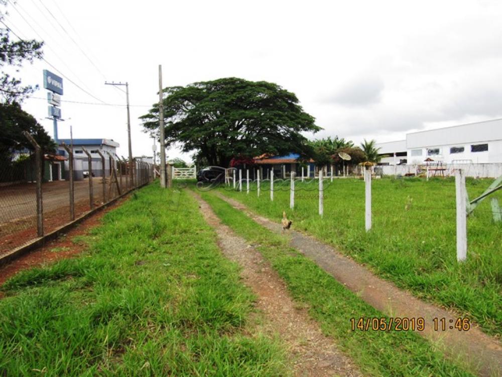 Comprar Comercial / Terreno em Itapetininga - Foto 5