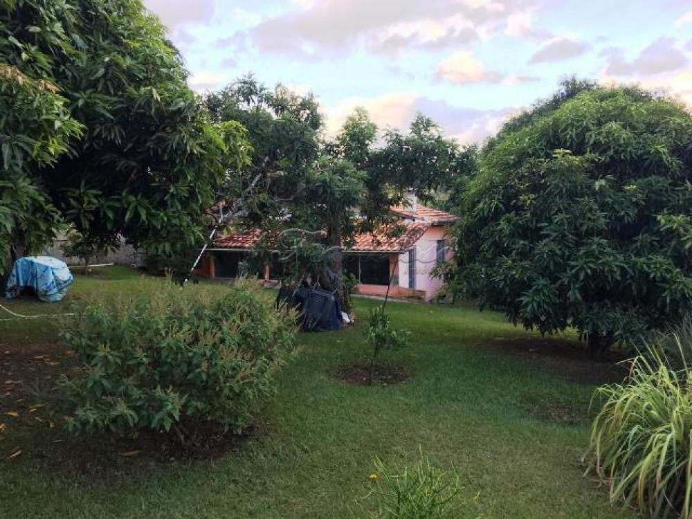 Comprar Casa / Padrão em Sarapuí apenas R$ 300.000,00 - Foto 7