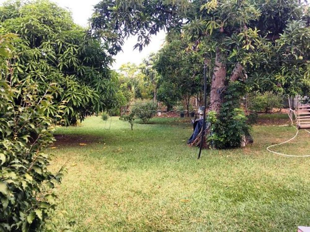 Comprar Casa / Padrão em Sarapuí apenas R$ 300.000,00 - Foto 8