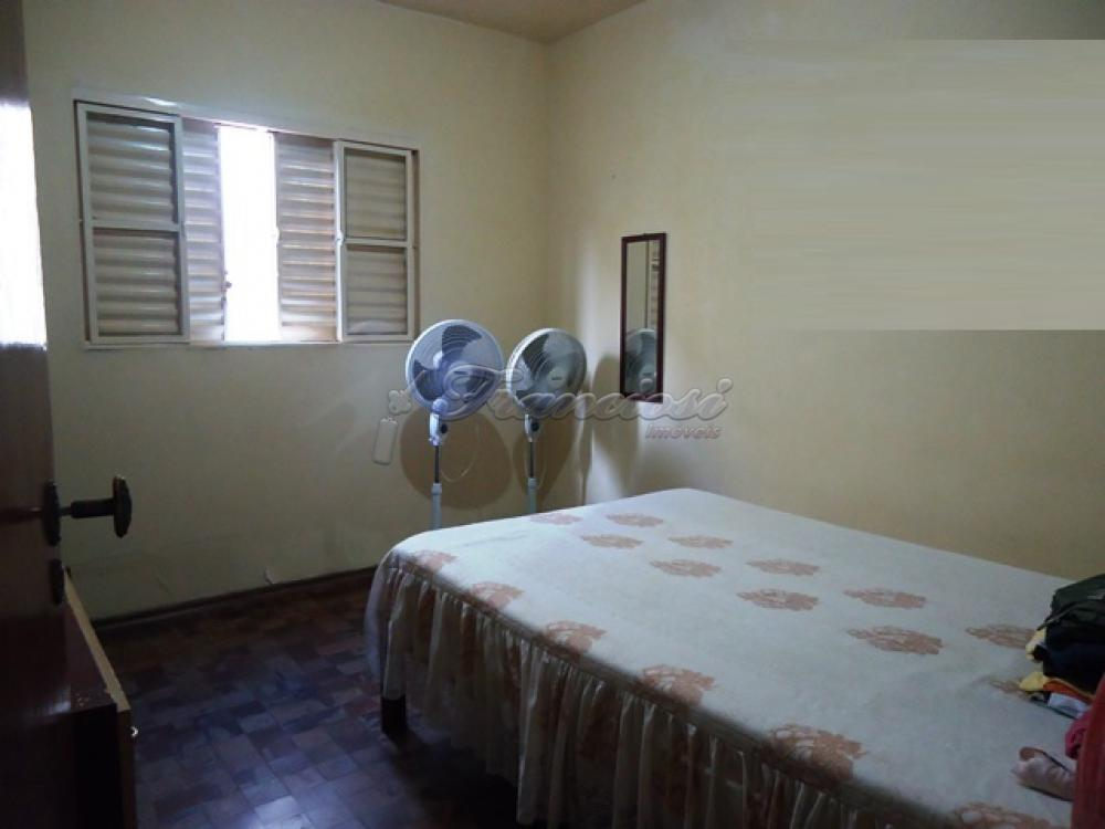 Comprar Casa / Padrão em Itapetininga apenas R$ 500.000,00 - Foto 5