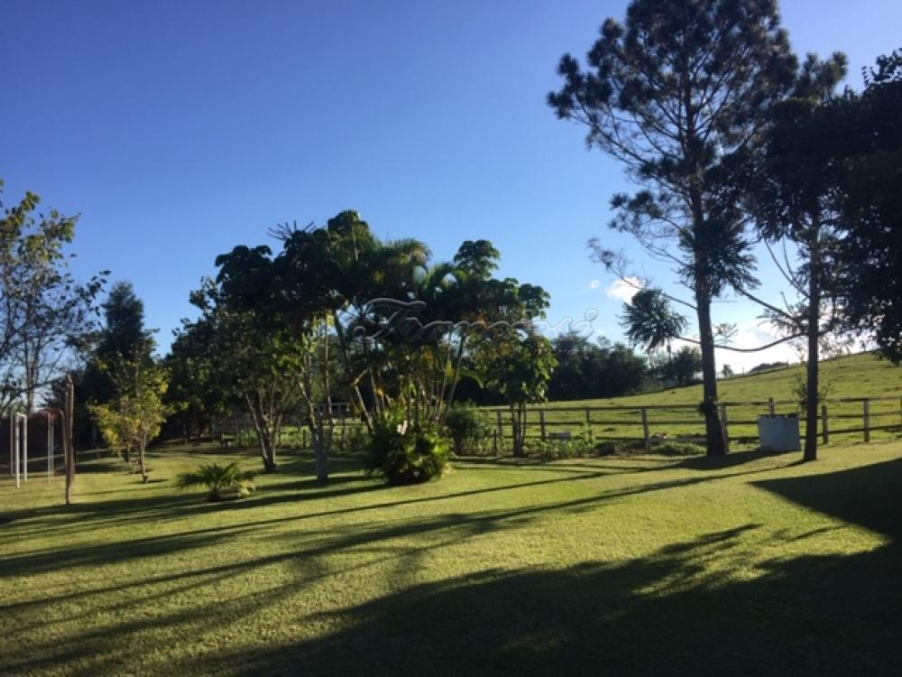 Comprar Rural / Sitio em Itapetininga apenas R$ 1.500.000,00 - Foto 15
