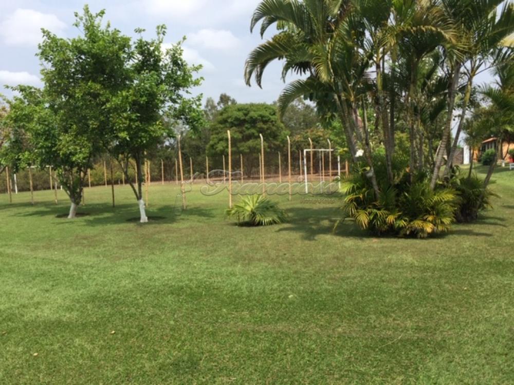 Comprar Rural / Sitio em Itapetininga apenas R$ 1.500.000,00 - Foto 17