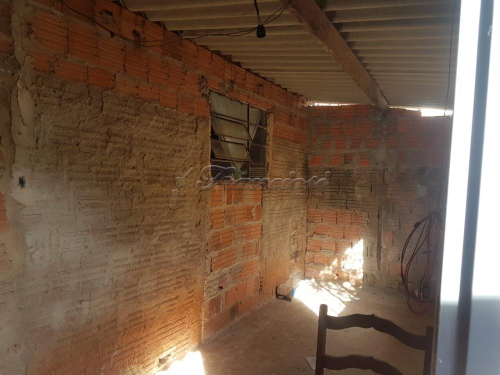 Comprar Casa / Padrão em Itapetininga apenas R$ 450.000,00 - Foto 14