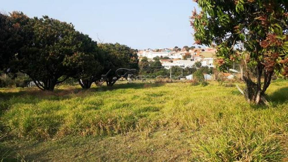 Comprar Terreno / Terreno em Itapetininga apenas R$ 2.300.000,00 - Foto 4
