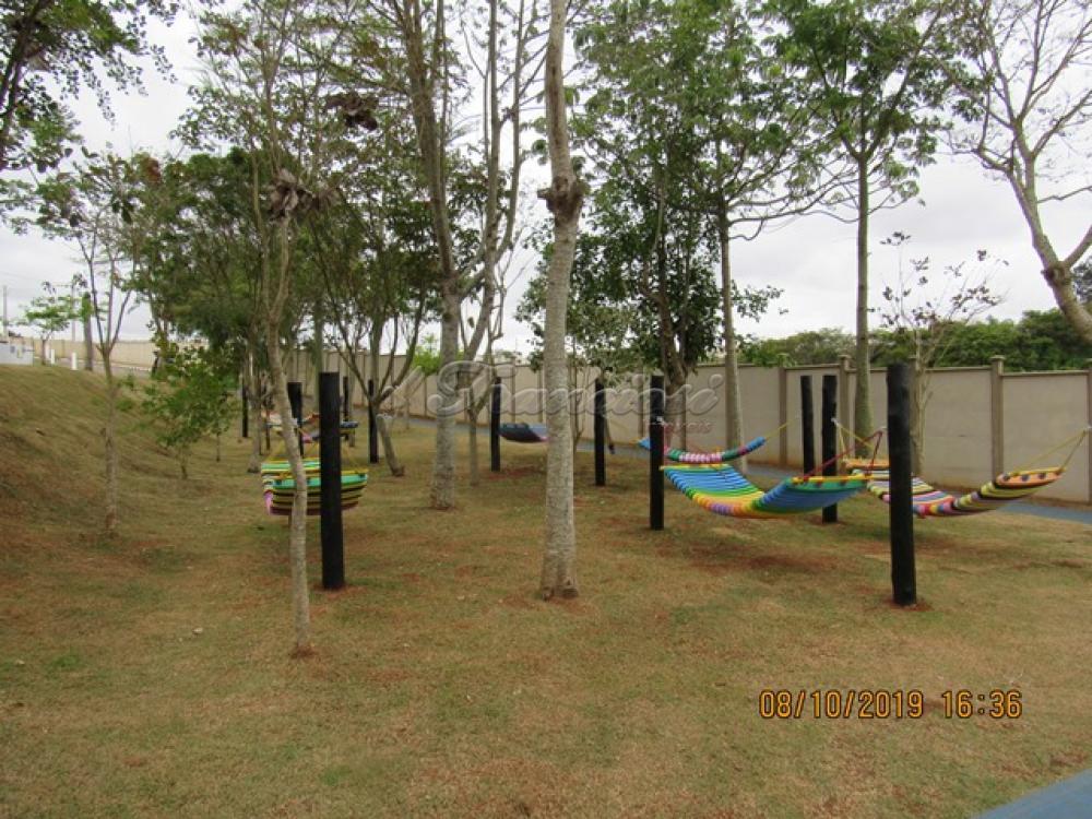Comprar Casa / Condomínio em Itapetininga apenas R$ 478.000,00 - Foto 15